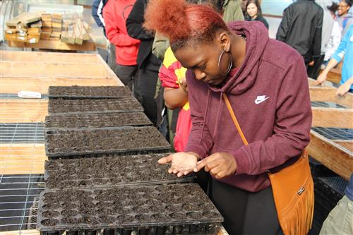 "Culinary Arts Students Take the First Steps in ""Soil to Food"" Journey"