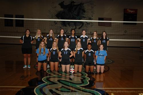 2013 JV Volleyball Team