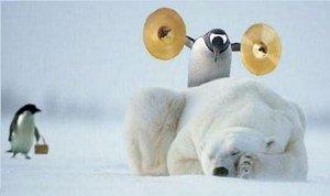 Penguin's Revenge