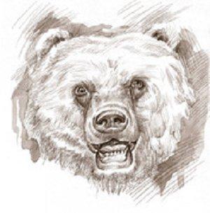 HAMMS' BEARS