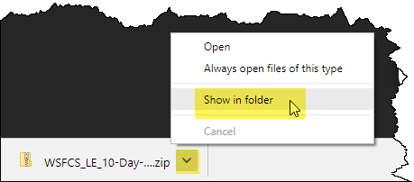 Google Chrome's Show in folder
