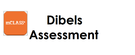 This link is for teachers using the DIBELS program. Please open this link while using Google Chrome as your web browser.