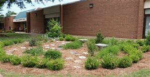 Holifield garden