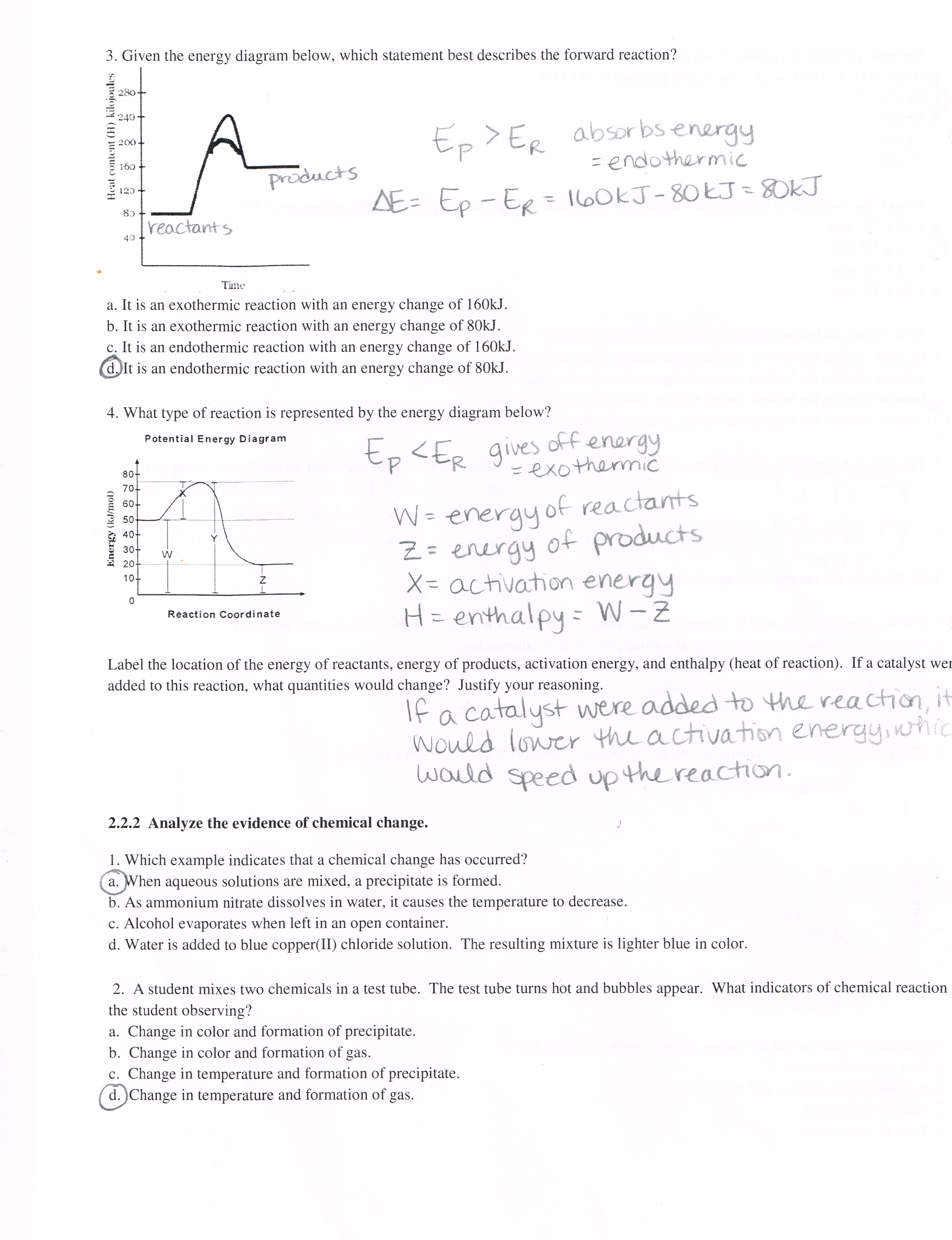 Atkins, Anne B / Honors Chemistry Documents